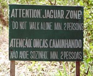 Ons het elke dag jaguars gesien,dus het ons maar aandag geskenk aan hierdie waarskuwing.